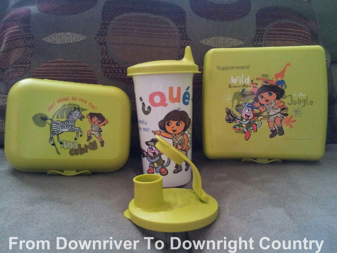 Tupperware Dora The Explorer Lunch Set Review And Giveaway Us Only Bring Your Own Downloadedfile